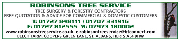 tree surgeons / tree work