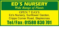 Wide range of plants - Garden Nursery