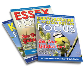 Essex Focus