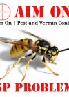 Aim On – Pest Control