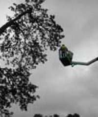 Cut And Clear Tree Services Ltd
